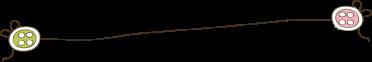 pyju-78